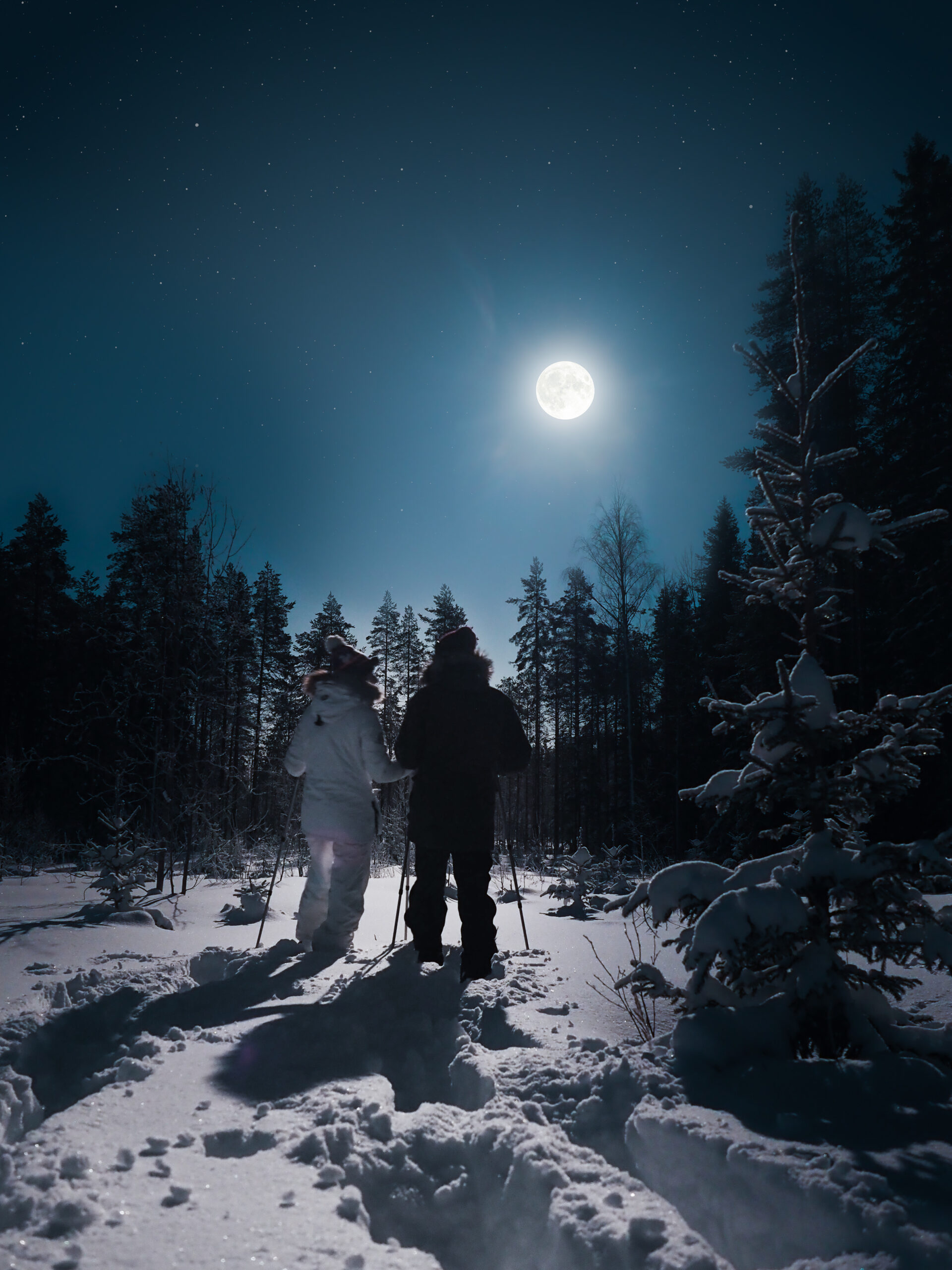 Snowshoing in the moonlight